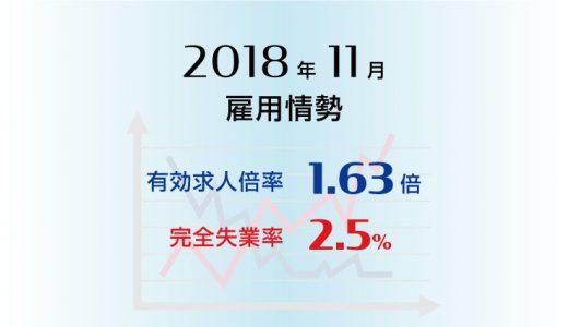 2018年11月の有効求人倍率は1.63倍で前月より0.01ポイント上昇(改善)、完全失業率は2.5%と前月より0.1ポイント上昇(悪化)